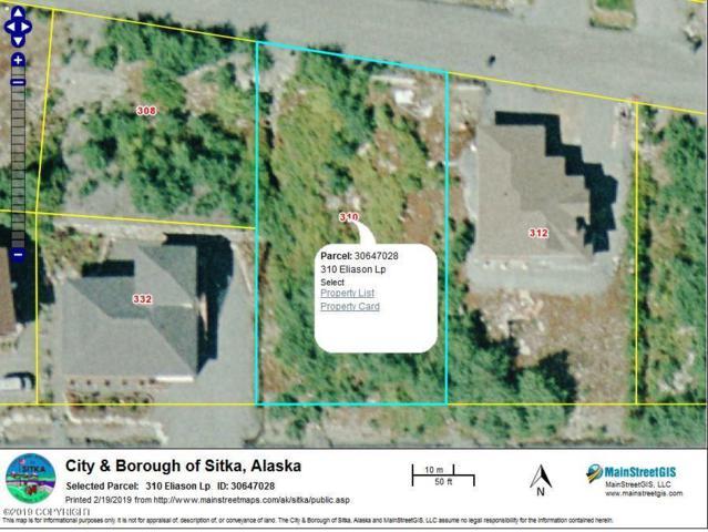 310 Eliason Loop, Sitka, AK 99835 (MLS #18-16979) :: The Adrian Jaime Group | Keller Williams Realty Alaska
