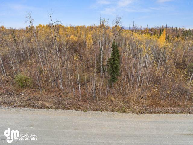 10651 W Backus Drive, Wasilla, AK 99623 (MLS #18-16983) :: RMG Real Estate Network | Keller Williams Realty Alaska Group