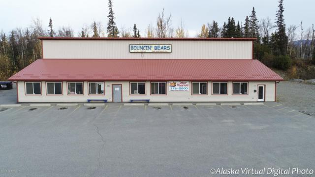 2951 E Bogard Road, Wasilla, AK 99654 (MLS #18-17224) :: Channer Realty Group