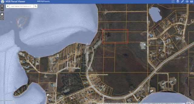 17017 W Northshore Drive, Big Lake, AK 99652 (MLS #18-17226) :: Core Real Estate Group