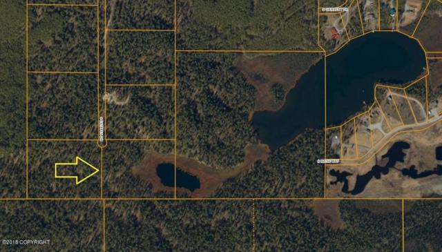 5891 S Estates Drive, Big Lake, AK 99652 (MLS #18-17296) :: Core Real Estate Group