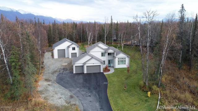 7209 N Dreamy Volga Circle, Palmer, AK 99645 (MLS #18-17384) :: Core Real Estate Group
