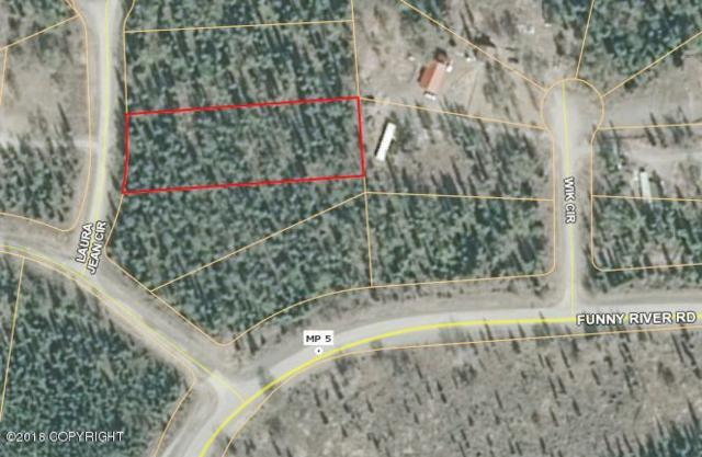 33100 Laura Jean Circle, Soldotna, AK 99669 (MLS #18-17599) :: Core Real Estate Group