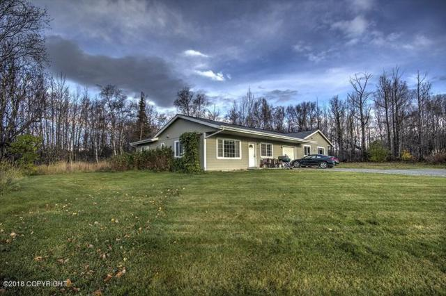 937 W Auklet Avenue, Palmer, AK 99645 (MLS #18-17602) :: Channer Realty Group