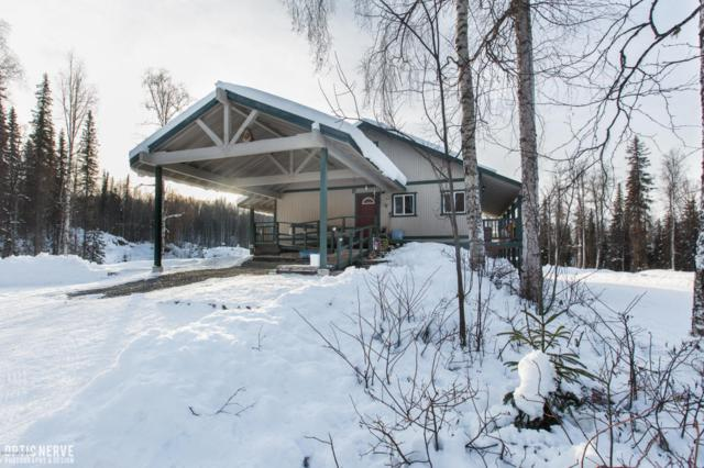 21695 E Caswell Lakes Road, Willow, AK 99688 (MLS #18-1761) :: RMG Real Estate Network | Keller Williams Realty Alaska Group