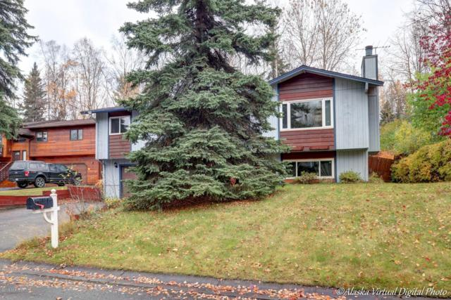 7721 Evander Drive, Anchorage, AK 99518 (MLS #18-17718) :: Channer Realty Group