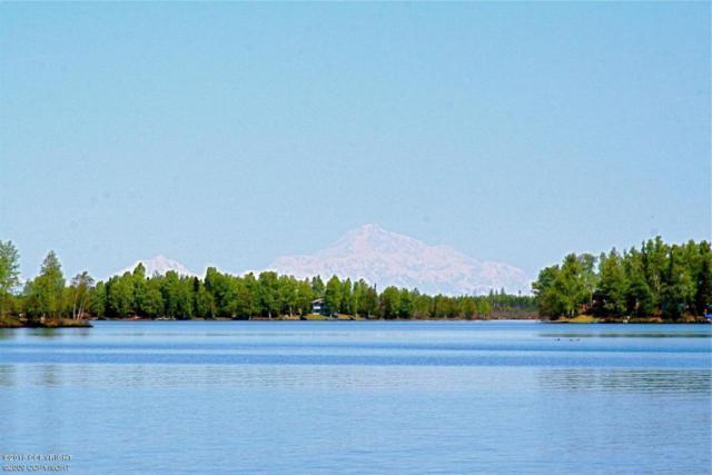 L9 No Road, Big Lake, AK 99652 (MLS #18-179) :: Real Estate eXchange