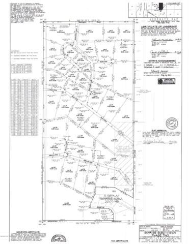 L29 Alliance Court, Delta Junction, AK 99737 (MLS #18-17902) :: Wolf Real Estate Professionals