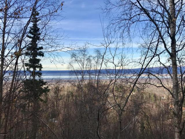 B1 L14 Diana Circle, Chugiak, AK 99567 (MLS #18-17908) :: Alaska Realty Experts