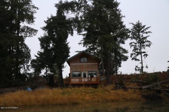 L23 Green Rocks, Petersburg, AK 99833 (MLS #18-17920) :: The Huntley Owen Team