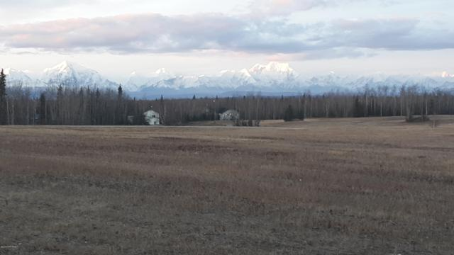 L24 Foxy Lane, Delta Junction, AK 99737 (MLS #18-17961) :: Channer Realty Group