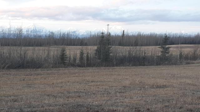 L25 Foxy Lane, Delta Junction, AK 99737 (MLS #18-17964) :: Channer Realty Group