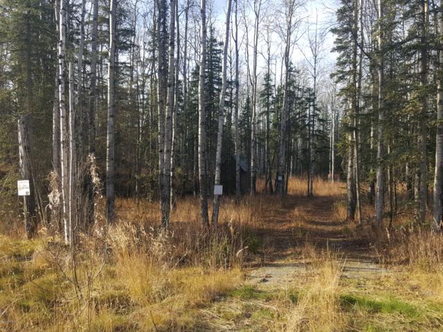 2552 N Windy Bottom Road, Wasilla, AK 99623 (MLS #18-18033) :: RMG Real Estate Network | Keller Williams Realty Alaska Group