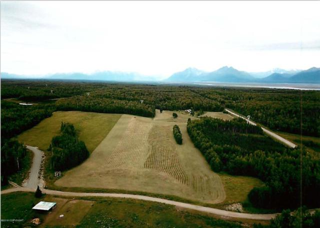 5725 S Mary N Bud Circle, Wasilla, AK 99623 (MLS #18-18102) :: Channer Realty Group