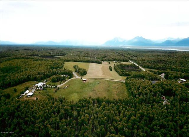 5720 S Mary N Bud Circle, Wasilla, AK 99623 (MLS #18-18103) :: Channer Realty Group