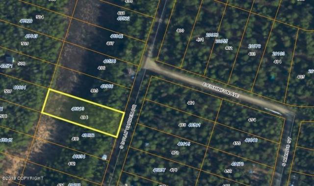 48610 S Dolly Varden Drive, Willow, AK 99688 (MLS #18-18112) :: RMG Real Estate Network | Keller Williams Realty Alaska Group