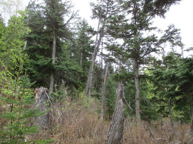 Tr B2C Katday Court, Hope, AK 99605 (MLS #18-1844) :: Core Real Estate Group