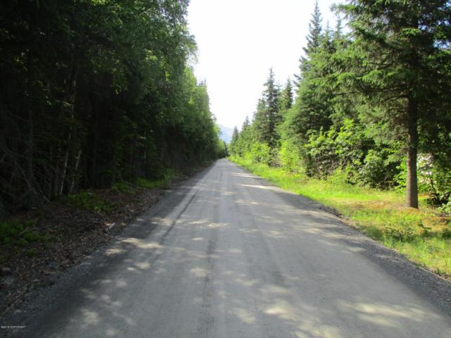 Tr B2E Resurrection Creek Road, Hope, AK 99605 (MLS #18-1845) :: Northern Edge Real Estate, LLC