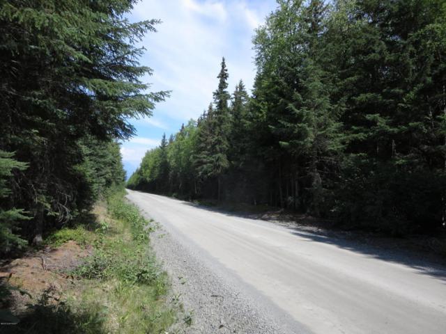 Tr B2F Resurrection Creek Road, Hope, AK 99605 (MLS #18-1846) :: Northern Edge Real Estate, LLC