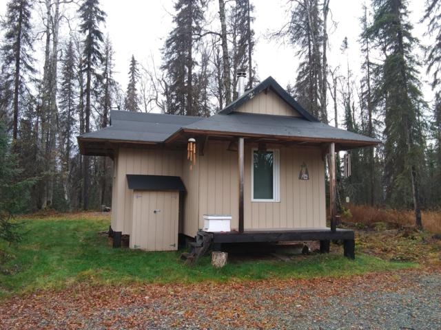 21248 E Makuskin Road, Talkeetna, AK 99676 (MLS #18-18493) :: RMG Real Estate Network | Keller Williams Realty Alaska Group