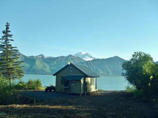 0000 Chinitna Bay, Remote, AK 99000 (MLS #18-18654) :: Team Dimmick