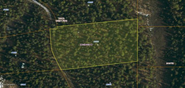 41983 S Moose Track Lane, Talkeetna, AK 99676 (MLS #18-1869) :: RMG Real Estate Network | Keller Williams Realty Alaska Group
