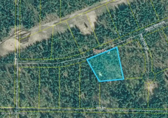 L5 Moosetadon Drive, Sterling, AK 99672 (MLS #18-18704) :: RMG Real Estate Network   Keller Williams Realty Alaska Group