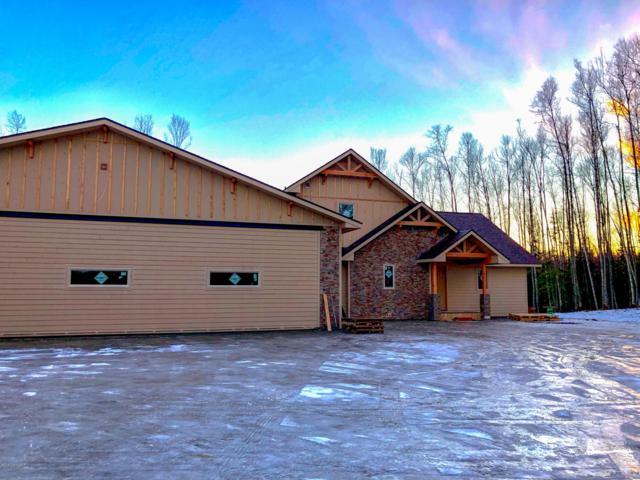 9646 W Aircraft Court, Wasilla, AK 99623 (MLS #18-18753) :: RMG Real Estate Network | Keller Williams Realty Alaska Group