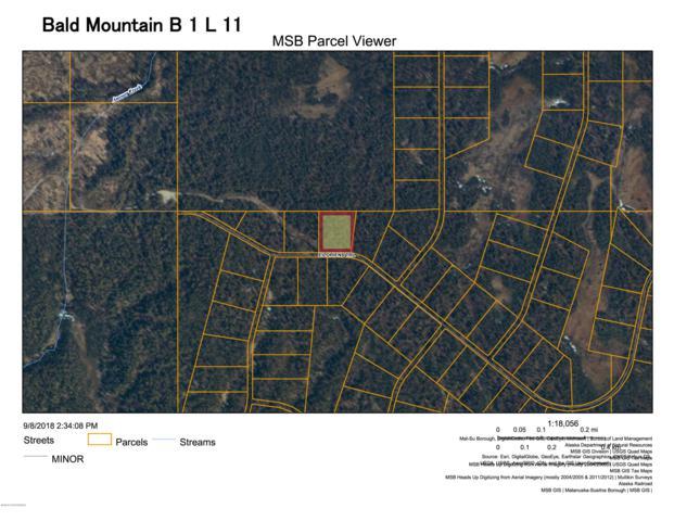 L11 Bald Moutain, Talkeetna, AK 99676 (MLS #18-18942) :: RMG Real Estate Network | Keller Williams Realty Alaska Group