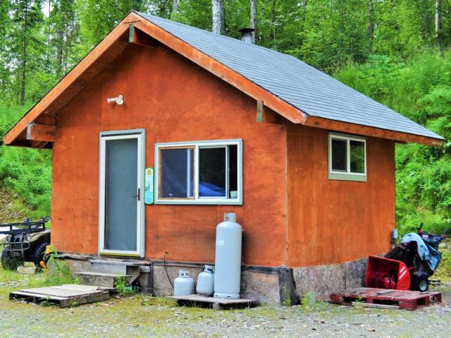 24001 Moose Run, Talkeetna, AK 99676 (MLS #18-18944) :: RMG Real Estate Network | Keller Williams Realty Alaska Group