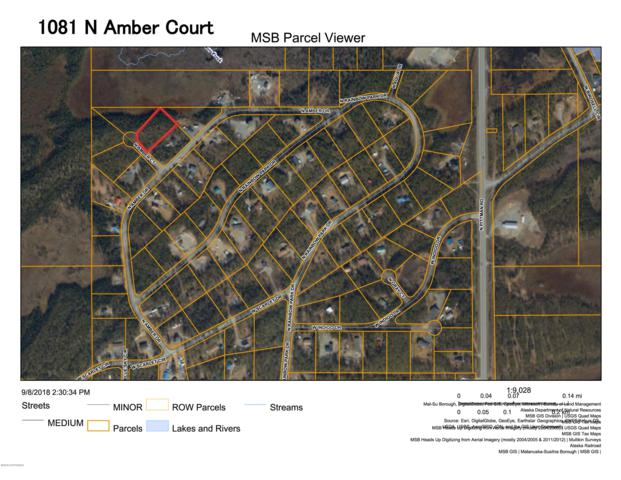 1081 N Amber Court, Wasilla, AK 99623 (MLS #18-19003) :: RMG Real Estate Network | Keller Williams Realty Alaska Group