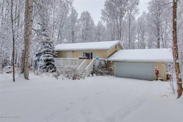 1107 Bruhn Road, Fairbanks, AK 99709 (MLS #18-19095) :: Alaska Realty Experts