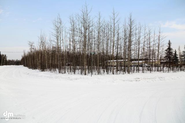 15002 W Rocky Lake Drive, Big Lake, AK 99652 (MLS #18-1939) :: RMG Real Estate Network   Keller Williams Realty Alaska Group