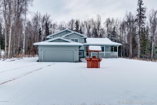 2956 E Wanamingo Drive, Wasilla, AK 99654 (MLS #18-19429) :: Channer Realty Group