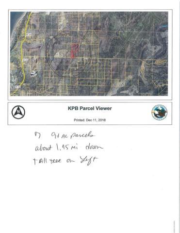 000 Tall Tree, Anchor Point, AK 99556 (MLS #18-19498) :: Team Dimmick