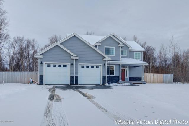 7935 E Downstream Drive, Palmer, AK 99645 (MLS #18-19550) :: The Huntley Owen Team
