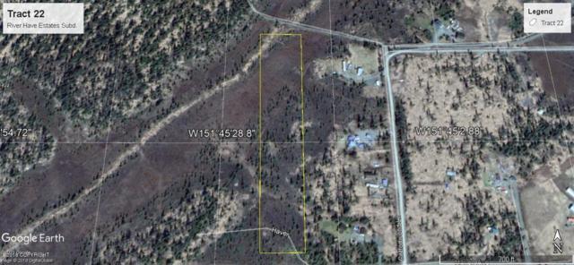 Tr 22 Birch Haven Estates, Anchor Point, AK 99556 (MLS #18-19595) :: Alaska Realty Experts
