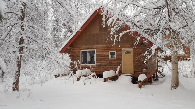 22038 S Easy Street, Talkeetna, AK 99676 (MLS #18-19637) :: RMG Real Estate Network | Keller Williams Realty Alaska Group