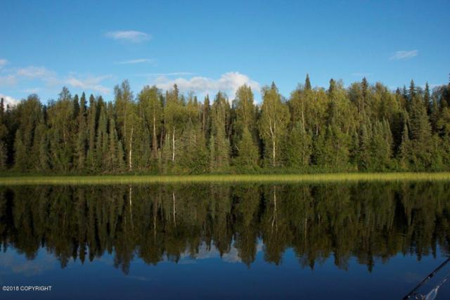 Tract P-1 No Road Red Shirt Lake, Willow, AK 99688 (MLS #18-19684) :: RMG Real Estate Network   Keller Williams Realty Alaska Group