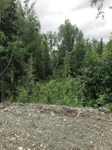 2210 S Holly Hill Circle, Wasilla, AK 99654 (MLS #18-19861) :: Alaska Realty Experts