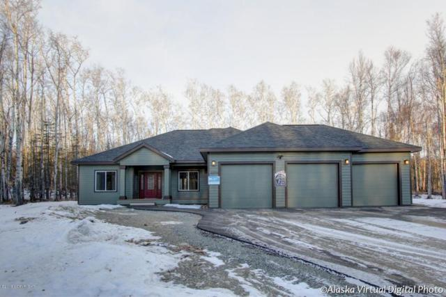 2728 E Odsather Circle, Wasilla, AK 99654 (MLS #18-2151) :: Channer Realty Group