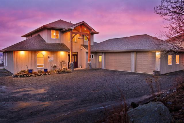 58005 Icy Bay Drive, Homer, AK 99603 (MLS #18-2155) :: Channer Realty Group