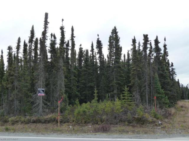 120 Rain Tree Lane, Soldotna, AK 99669 (MLS #18-2171) :: Northern Edge Real Estate, LLC