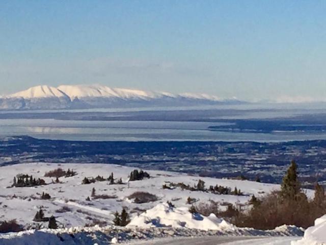28 Acres Meadow Road, Anchorage, AK 99516 (MLS #18-2190) :: RMG Real Estate Network | Keller Williams Realty Alaska Group