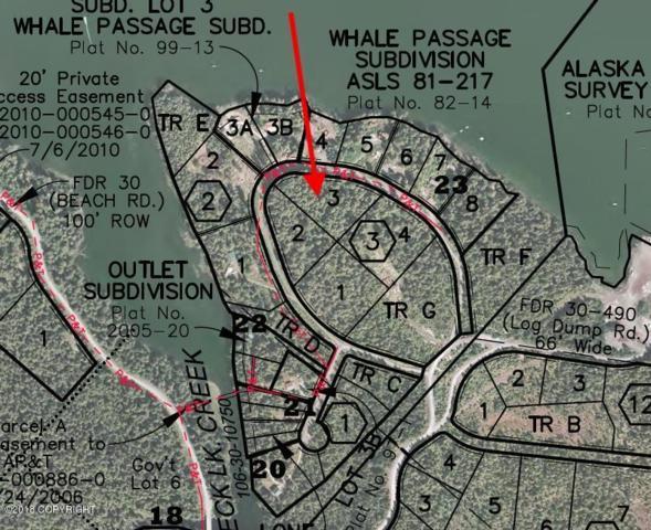 L3 B3 Saltery Circle, Remote, AK 99950 (MLS #18-2297) :: Northern Edge Real Estate, LLC