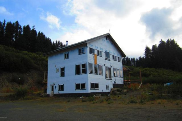 1155 S Boone Lane, Seldovia, AK 99663 (MLS #18-2362) :: Channer Realty Group