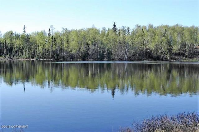 43634 Eagle Lake Drive, Kenai, AK 99611 (MLS #18-2399) :: Northern Edge Real Estate, LLC