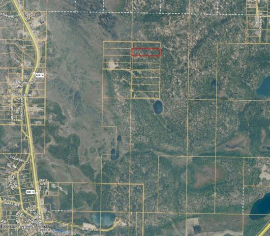 000 Moose Street, Soldotna, AK 99669 (MLS #18-2409) :: Core Real Estate Group