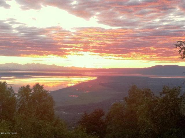 L4 B2 Mountain Air Drive, Anchorage, AK 99516 (MLS #18-2436) :: Northern Edge Real Estate, LLC
