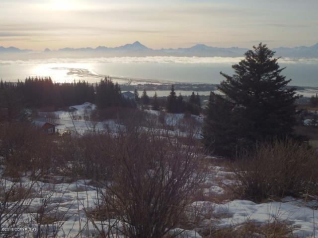 285 Paintbrush Street, Homer, AK 99603 (MLS #18-2460) :: RMG Real Estate Network | Keller Williams Realty Alaska Group